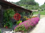 哥斯达黎加的房产,Quebradilla,编号43464330