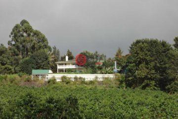居外网在售美国Holualoa7卧3卫的房产总占地157164平方米USD 9,875,000