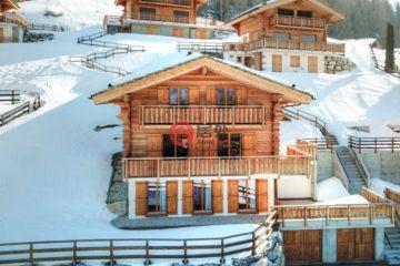 居外网在售瑞士5卧4卫原装保留的房产总占地529平方米CHF 1,500,000