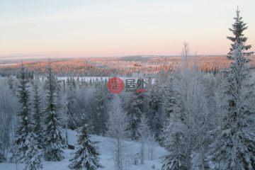 居外网在售芬兰EUR 480,000总占地222070平方米的土地