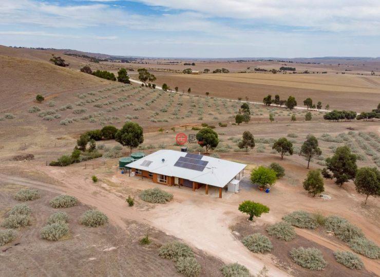澳洲南澳大利亚卡林顿4卧2卫的房产