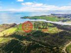 新西兰AucklandOkura Bush的土地,编号51003897