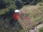 菲律宾Calabarzon阿方索的土地,Rodeo Countryside Estate,编号55810468