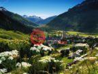 瑞士的房产,编号48994346