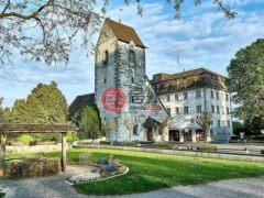 居外网在售瑞士Romanshorn22卧的房产总占地4186平方米