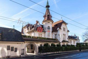 居外网在售瑞士蒙特勒9卧的房产总占地2135平方米