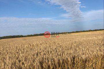 居外网在售加拿大Broad Valley总占地5175929平方米的农场