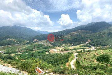 居外网在售马来西亚KarakMYR 298,000总占地4047平方米的土地