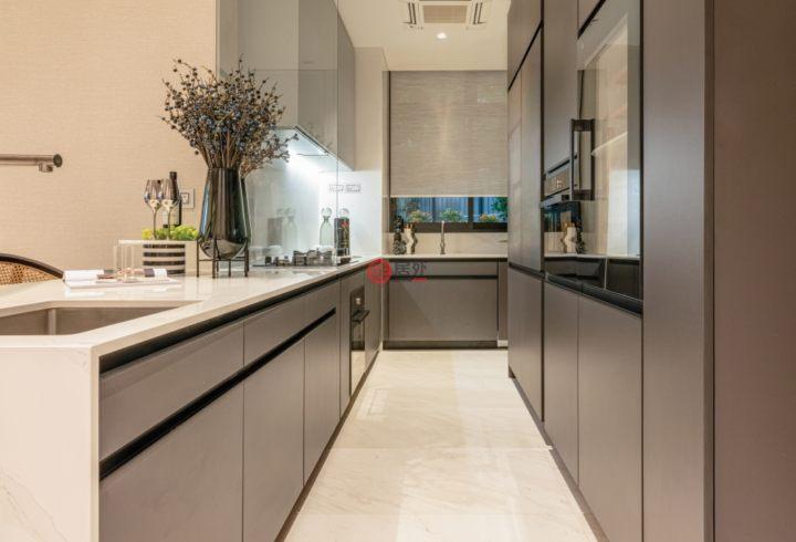 新加坡SingaporeSingapore的公寓,16 Cairnhill Rise,编号59637900